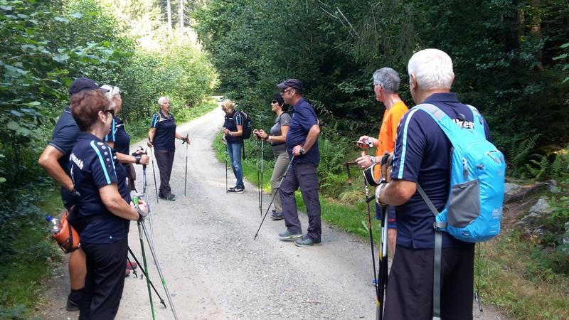 Nordic Walking_Bayerischer Wald_2